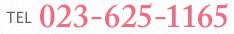 TEL:023-625-1165
